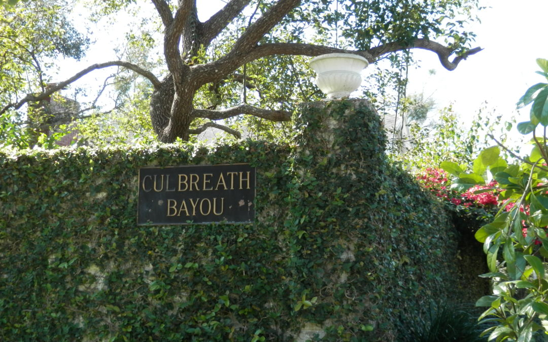 Neighborhood Highlight: Culbreath Bayou