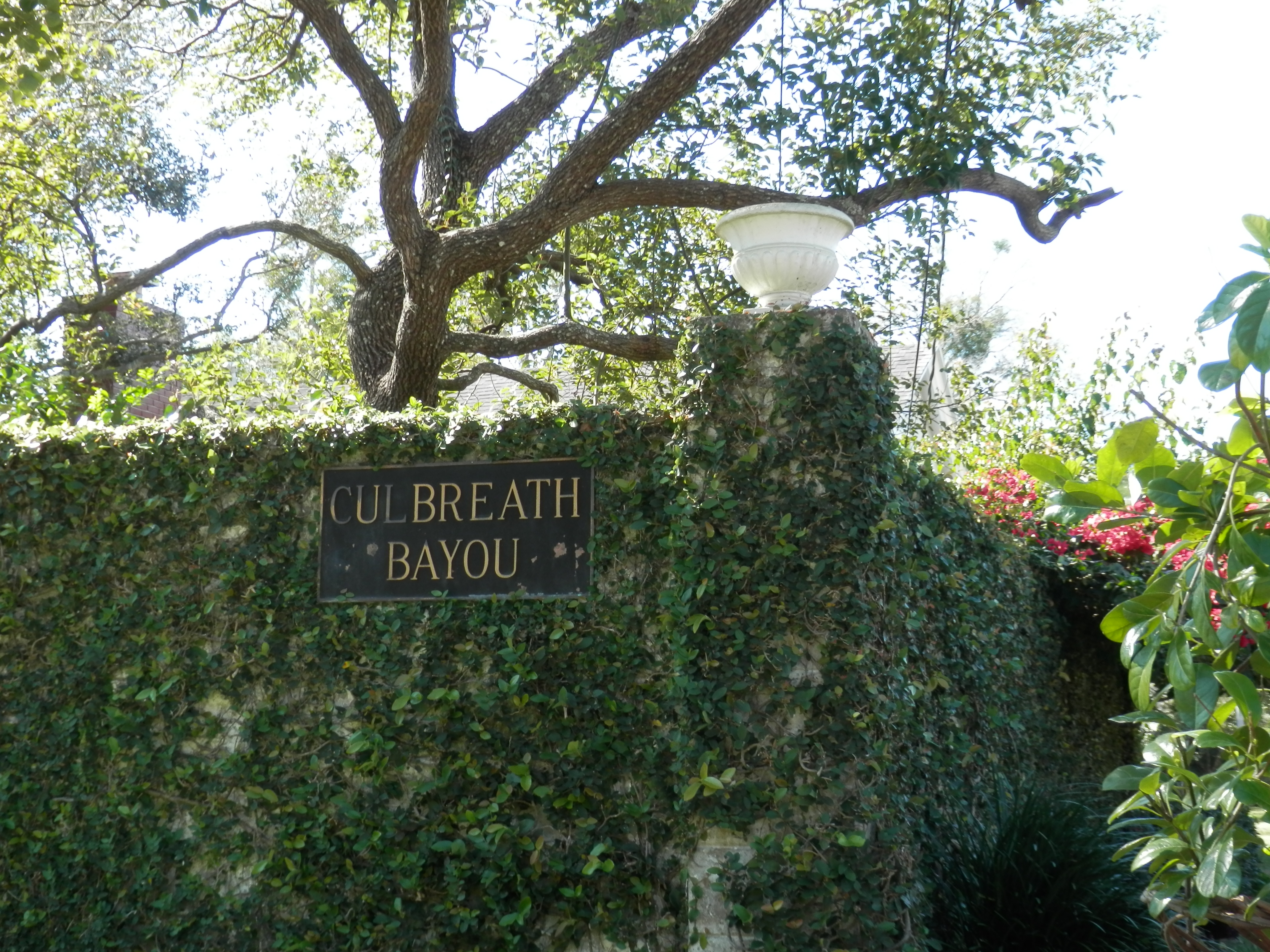 Neighborhood Highlight: Culbreath Bayou