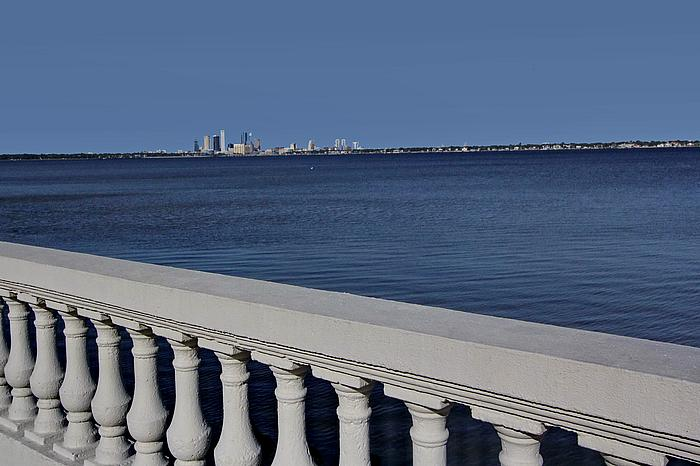 Neighborhood Highlight: Bayshore Beautiful