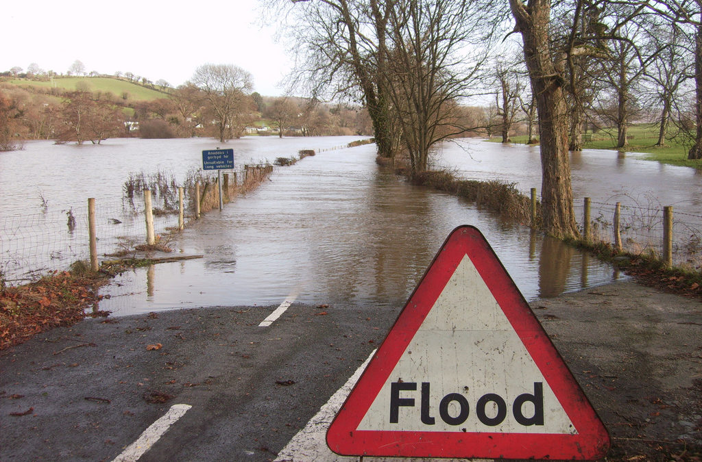 Flood insurance: facts, fiction